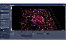 ZEISS: Joint further development of 3D visualizations of multidimensional image data